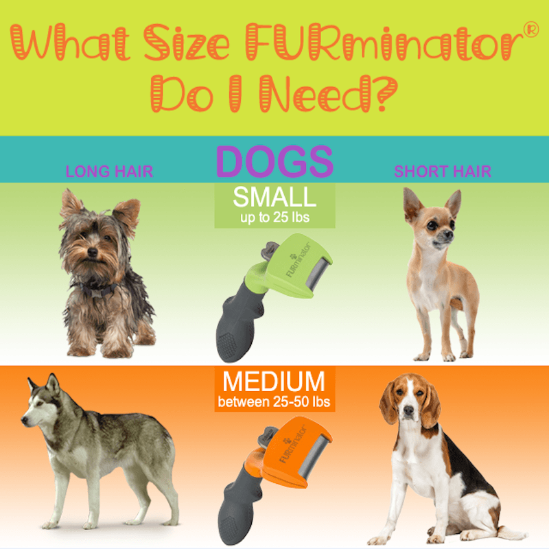 What Size Furminator Do I Need Pawsome Critters
