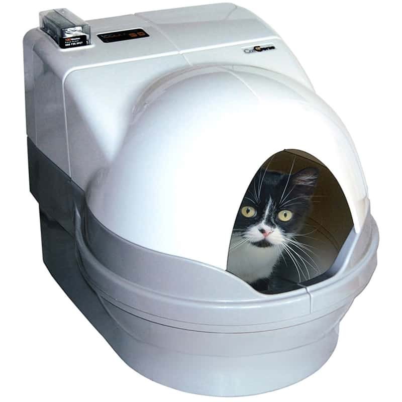 CatGenie: Best Automatic Litter Box for Multiple Cats